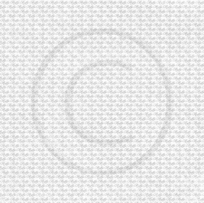Bilde av PD 18452 Brudeferd