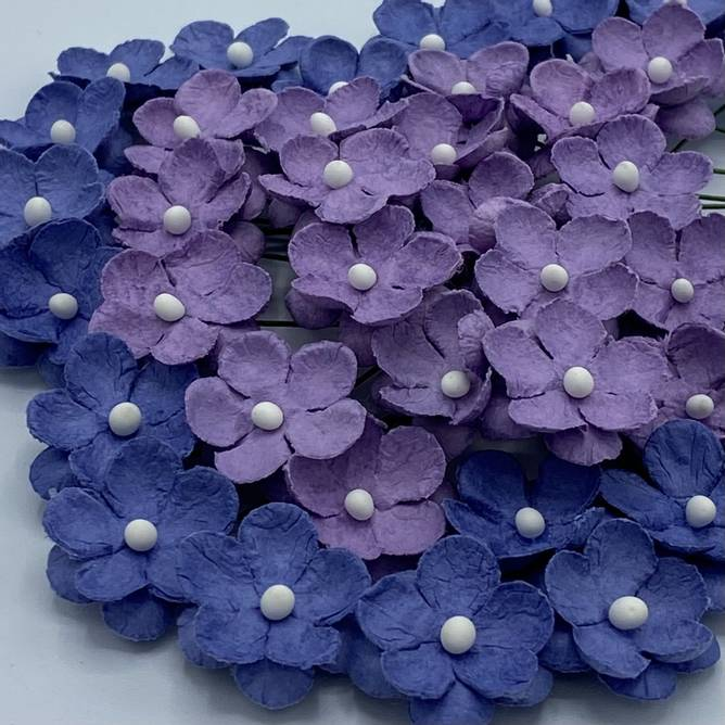 Bilde av Søte blomster, mørk vintage