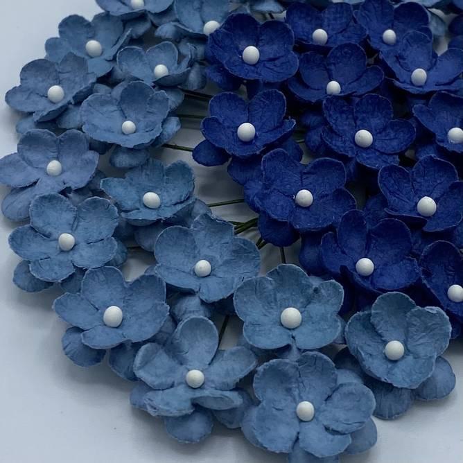 Bilde av Søte blomster blå (6)