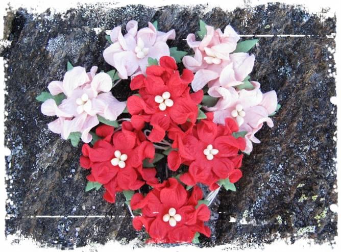 Bilde av Små gardenia, sommerrød (6)