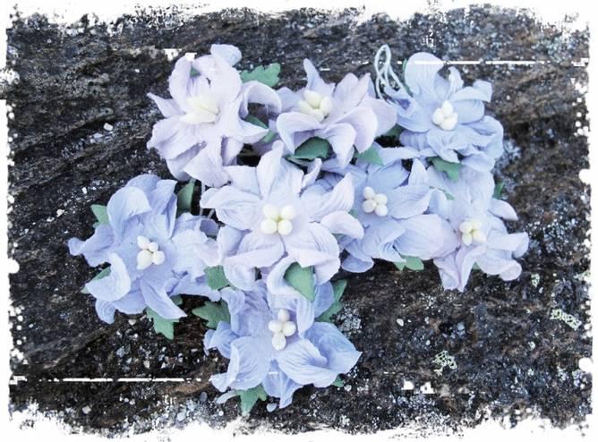 Bilde av Små gardenia, vintage lilla