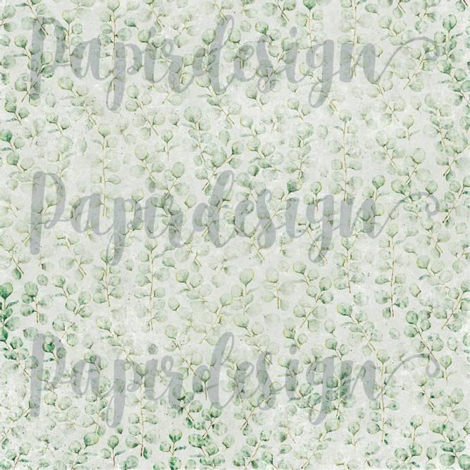 Bilde av PD 2100569 Eucalyptus ( 25