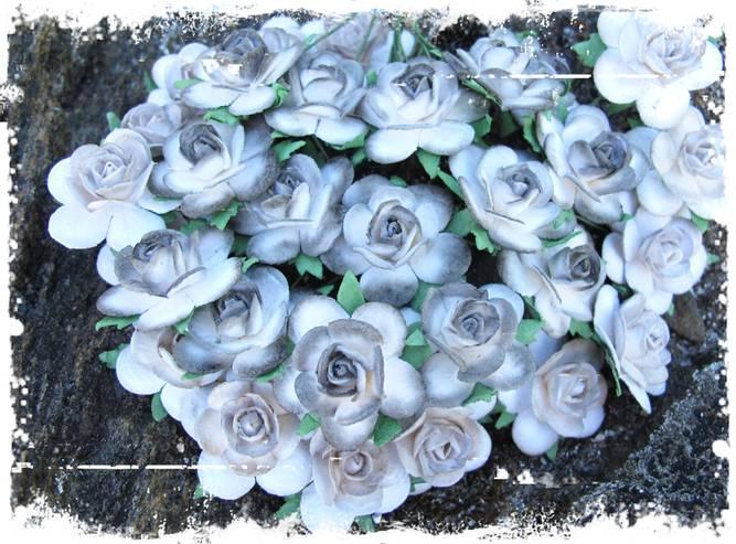 Bilde av Roser 2,5 cm, farget kant